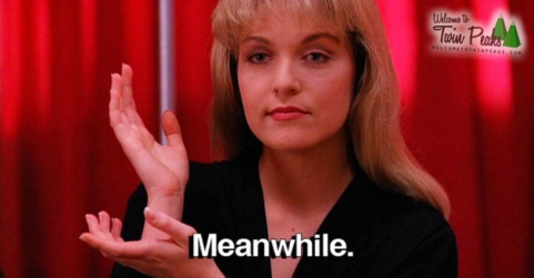 laura-palmer-meanwhile-pose